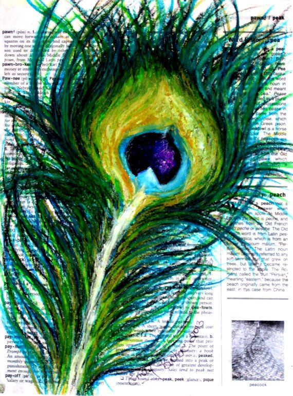 how to draw a peacock feather with oil pastels