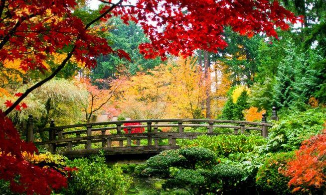 Sfondi Desktop Primavera Gratis 9 Immagini Bellissime Donnad Nel 2020 Giardino Asiatico Immagini Della Natura Carta Da Parati Natura