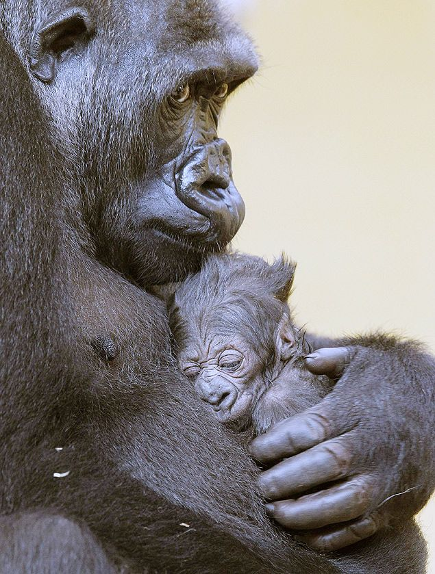 Moja an her baby. Lovely!
