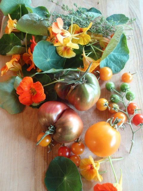 Tomatoes and nasturtiums from the Sunset Magazine test garden. Photo by elaineatsunset