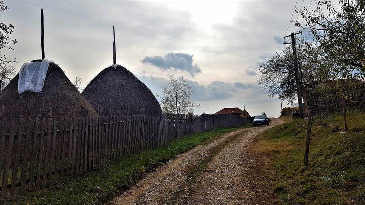 Excursie de o zi: Calea ferata Ramnicu Valcea - Valcele - Trivo.ro