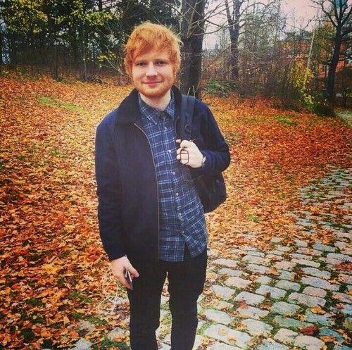 17 Best Ideas About Ed Sheeran Guitar On Pinterest