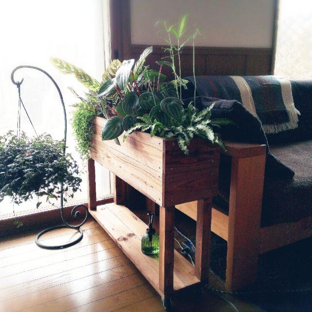 DIY/観葉植物/部屋全体のインテリア実例 - 2015-02-23 14:06:08 | RoomClip(ルームクリップ)