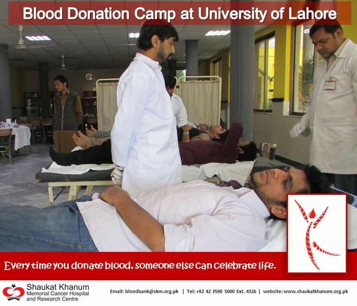 Blood Donation Camp - A Report for Board 10th, 12th Exams