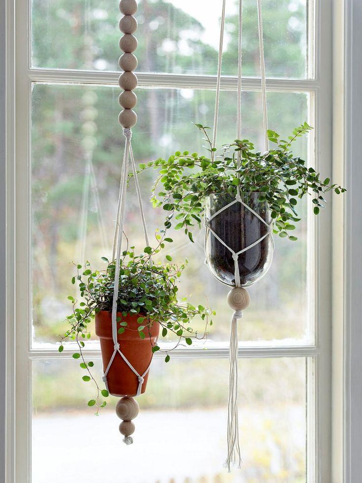 Häng upp dina växter på ett personligt sätt, att göra sin egen ampel är superlätt. [i]Foto: Magnus Selander[/i]