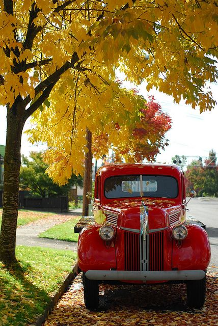 Red Truck On A Fall Afternoon