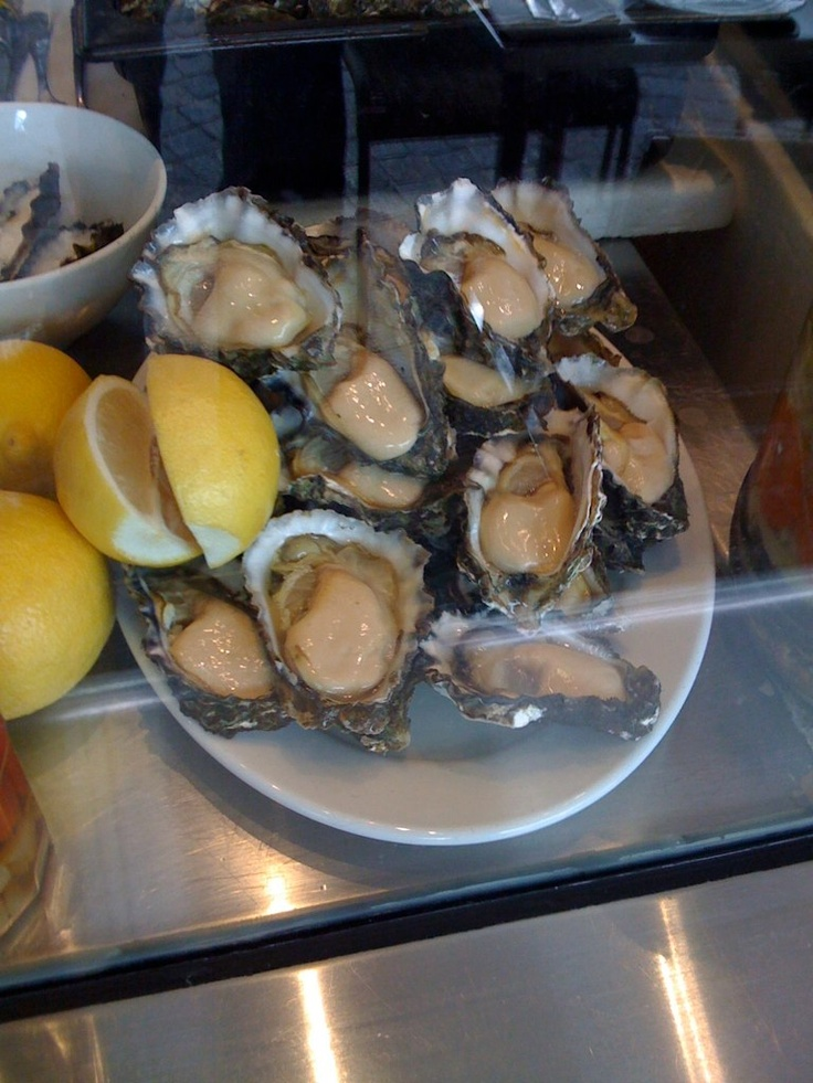 Few oysters for lunch in Sydney