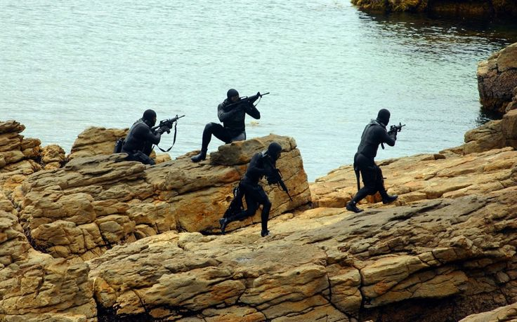 Special troops. SEA LIONS. Details of one operation.