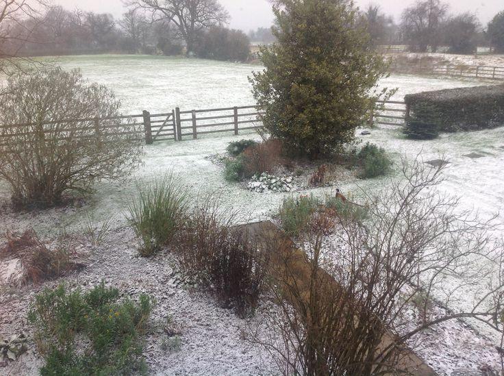 Snow Winter 2012-13