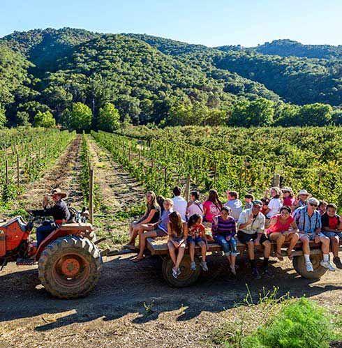 Avila Valley Barn | San Luis Obispo, CA | Hay Rides  Beautiful Weather! #skinapalooza #rodanandfields