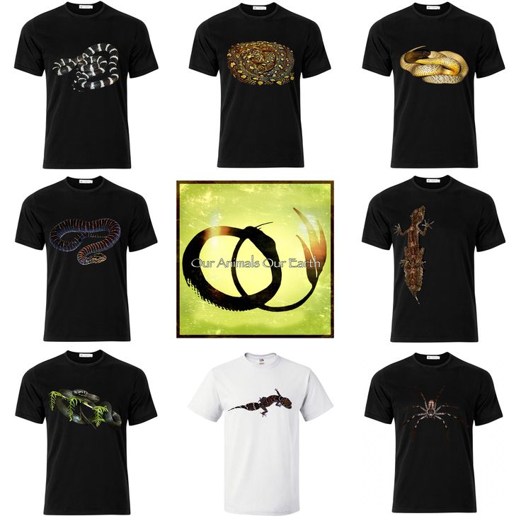 Over 80 tshirt designs available on www.ouranimalsourearth.com