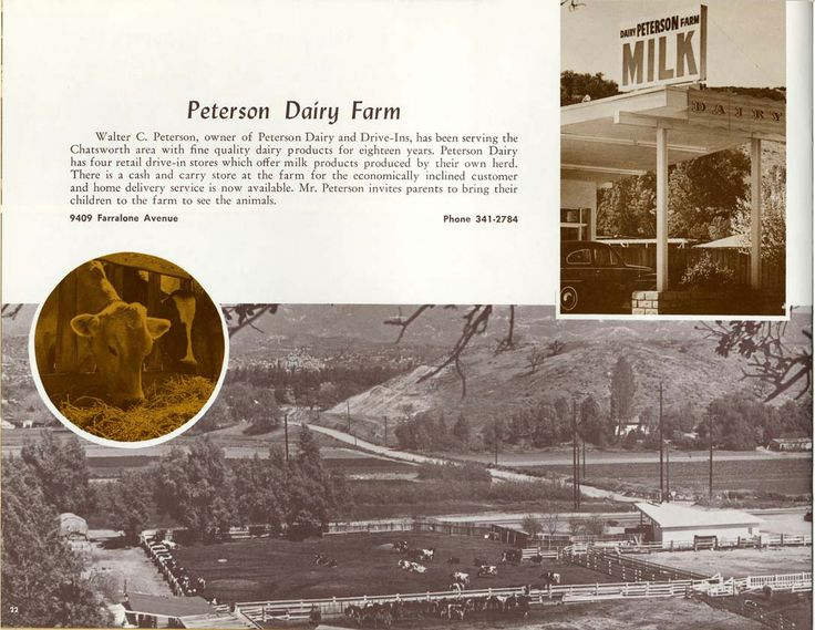 Advertisement for Peterson Dairy Farm at 9409 Farrolone Avenue in Chatsworth, California, circa 1966. Associated Chambers of Commerce of the San Fernando Valley Collection. San Fernando Valley History Digital Library.