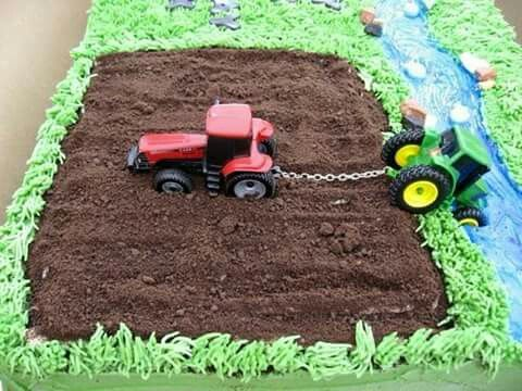 Green tinted coconut, crumbled oreos (minus frosting) & an ADORABLE little boys cake!  Jelly beans for rocks, & two tractors
