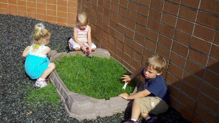 Cutting grass with scissors. Use this fun sensory activity in the outdoor classroom. Take a sandbox and make many holes for drainage. Fill with potting soil and plant grass seed. Cover seeds with a thin layer of soil. We will be adding a fence, rocks and animals.