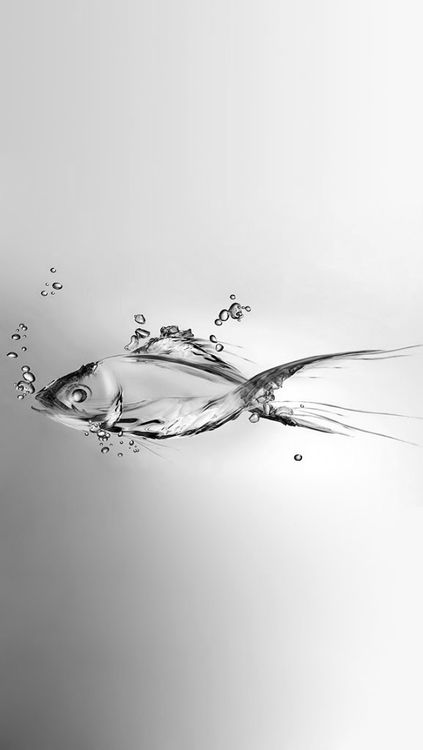 Water fish?