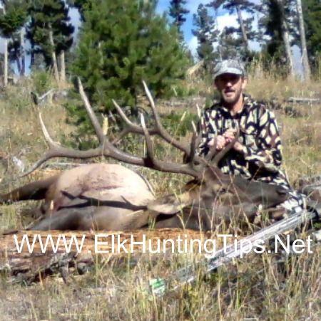 Elk hunting tips