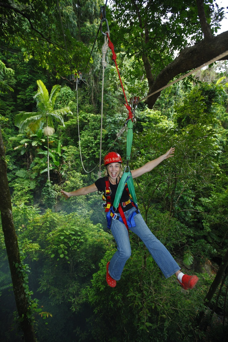Jungle Surfing Canopy Tours, borders the Daintree National Park, 2.5 hours north of Cairns, Queensland, #Australia More: http://www.junglesurfing.com.au