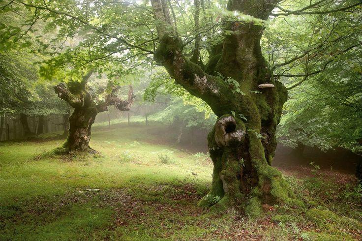 paisajes-naturales-natural