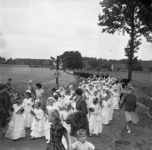 Mierlo-Hout - Wij schrijven 7 augustus 1955 en we zitten in Mierlo-Hout. Voor ons ligt een foto van een tafereeltje uit het rijke roomse leven zoals dat geleefd werd in het Brabant van zestig jaar geleden. Over een klinkerweggetje door de velden trekt, begeleid door enkele dames, een stoet bruidjes. Klik op de afbeelding voor het hele verhaal!