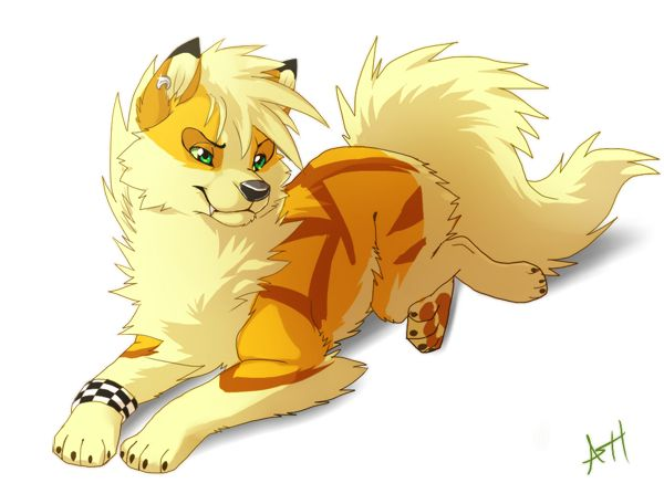 Yellow Anime Wolf 17 Best images about C...