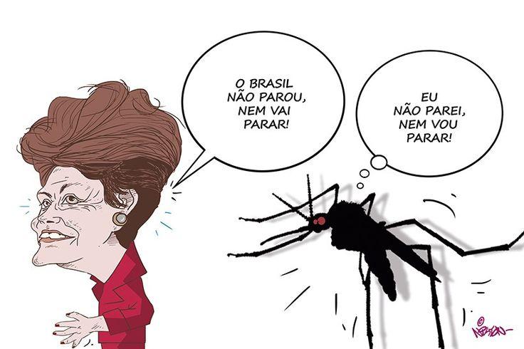 Dilma Rousseff vai dar aula a crianças baianas de como combater mosquito da dengue   Foto: Nilton Magalhães