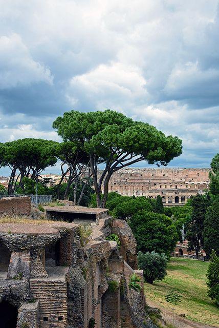 Palatine Hill Ruins - Rome, Italy