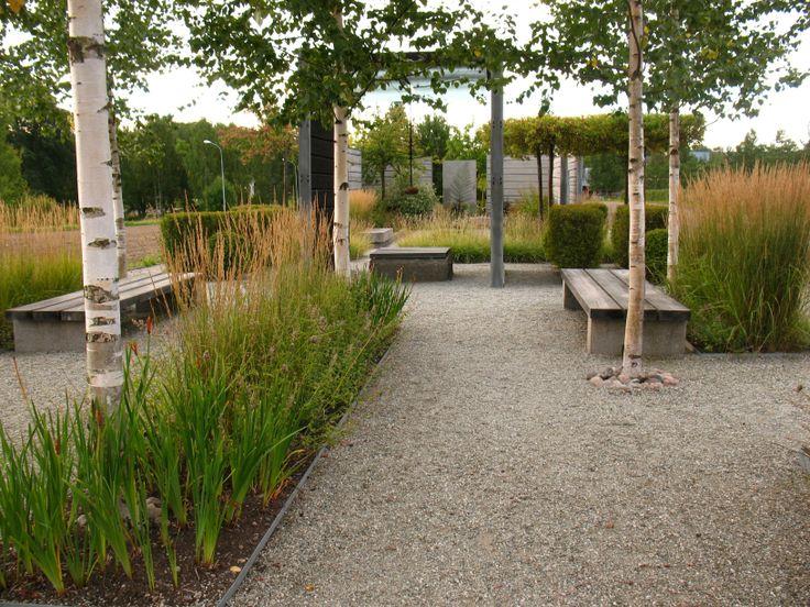 Garden.  Park. Gravel. Birch. Grass.