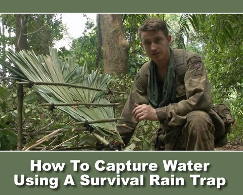 How To Build A Survival Rain Trap - used by the British Army, this could save your life... #survival #shtf #emergency #wilderness