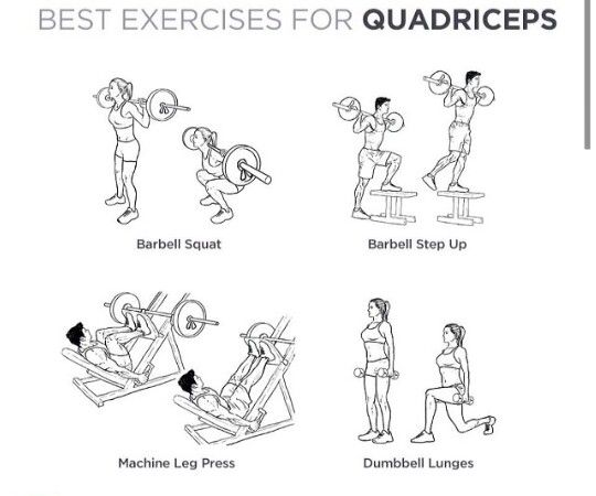 17 best images about ejercicios para el femoral on for Ejercicios gym