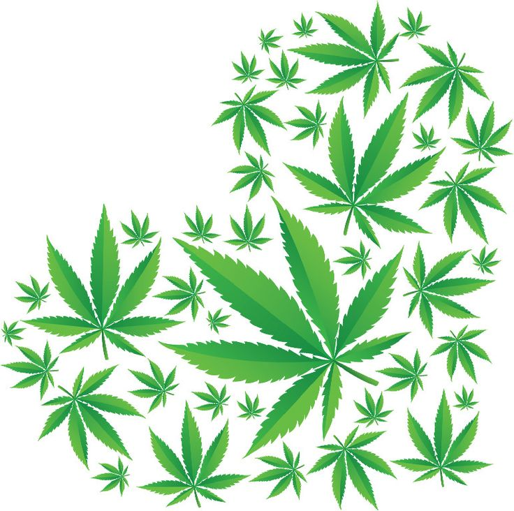 JAMA: Medical Cannabis States Possess Lower Rates of Opiate-Induced Fatalities | Weedist