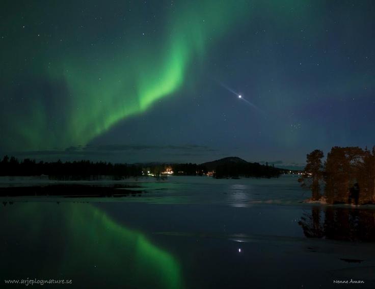 Credit: Nenne Åman from Arjeplog Lapland, Northern Sweden