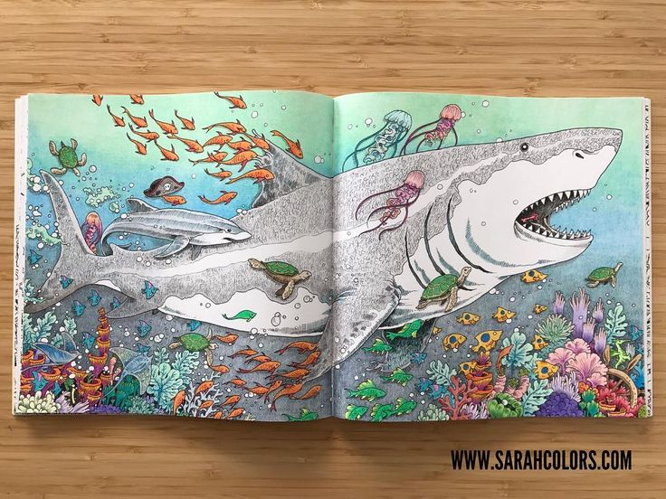 Doodle Coloring Adult Books Drawings Of Sharks Artist Pencils With Zentangles Documentaries Sketchbooks