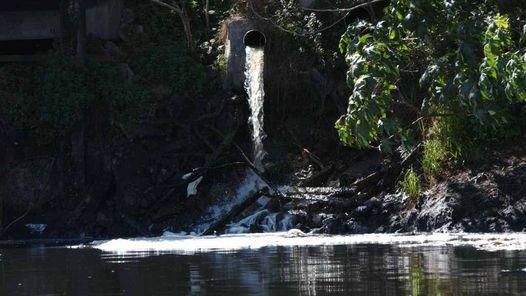 Este artículo publicado en el 2014, releva los cinco problemas ambientales que más preocupan a la población argentina según encuestas. El cambio climático, la contaminación del agua, la basura, la tala indiscriminada.