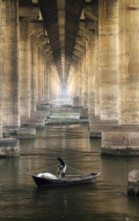 Solitude fishing under a bridge in Ganges, Allahabad, India.