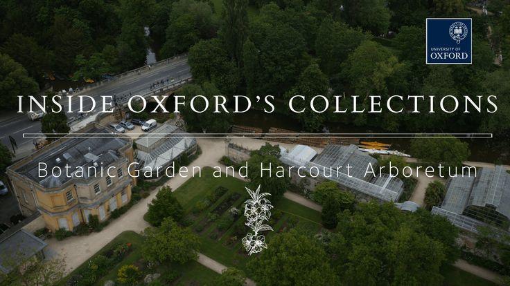 Oxford's Living Libraries: Botanic Garden and Harcourt Arboretum