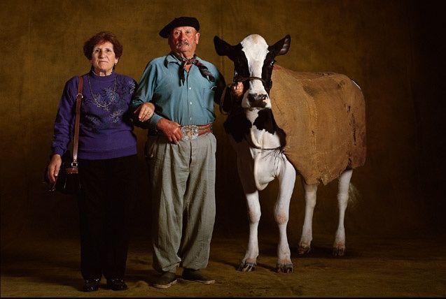 Les 73 meilleures images propos de yann arthus bertrand for Fond ecran photo yann arthus bertrand