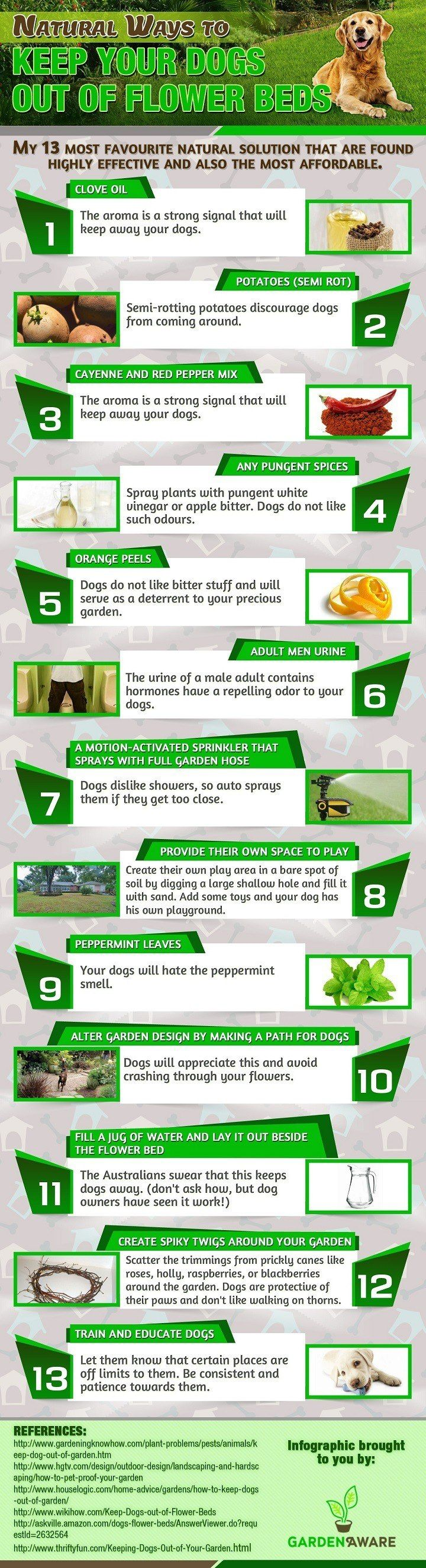 13 Natural Ways To Keep Your Dogs Out Of Flower Beds Not Sure How Many Of  These Will Work Considering My Dog Eats Oranges Loves To Go In The Shower  And Eat ...