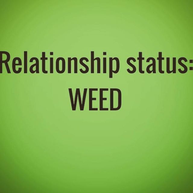 True Love!! Check out our other pages @worldofdabs @worldofbongs_ &…