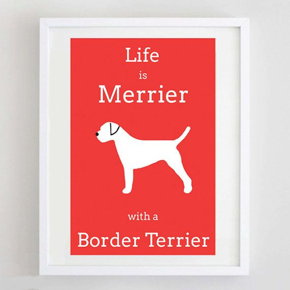 Border Terrier Picture  Border Terrier Print  Dog by ForeverFoxed, £18.50