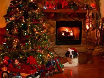 Christmas trees and fireplaces