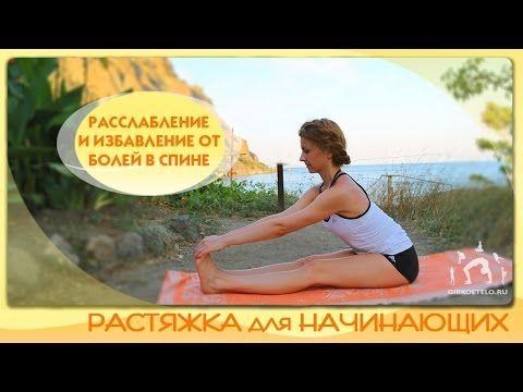 Растяжка для начинающих / Расслабление, развитие гибкости и избавление от болей в спине - YouTube