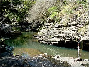 Keen anglers can try their hand at fly fishing in the three stocked dams on the Glen Avon farm. Members of the Bankberg fly fishing club can also fish the Naude river, which includes the pools below Glen Avon Falls.