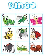 Bingo Insects
