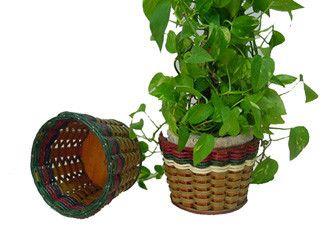 "Planter Basket 6"""