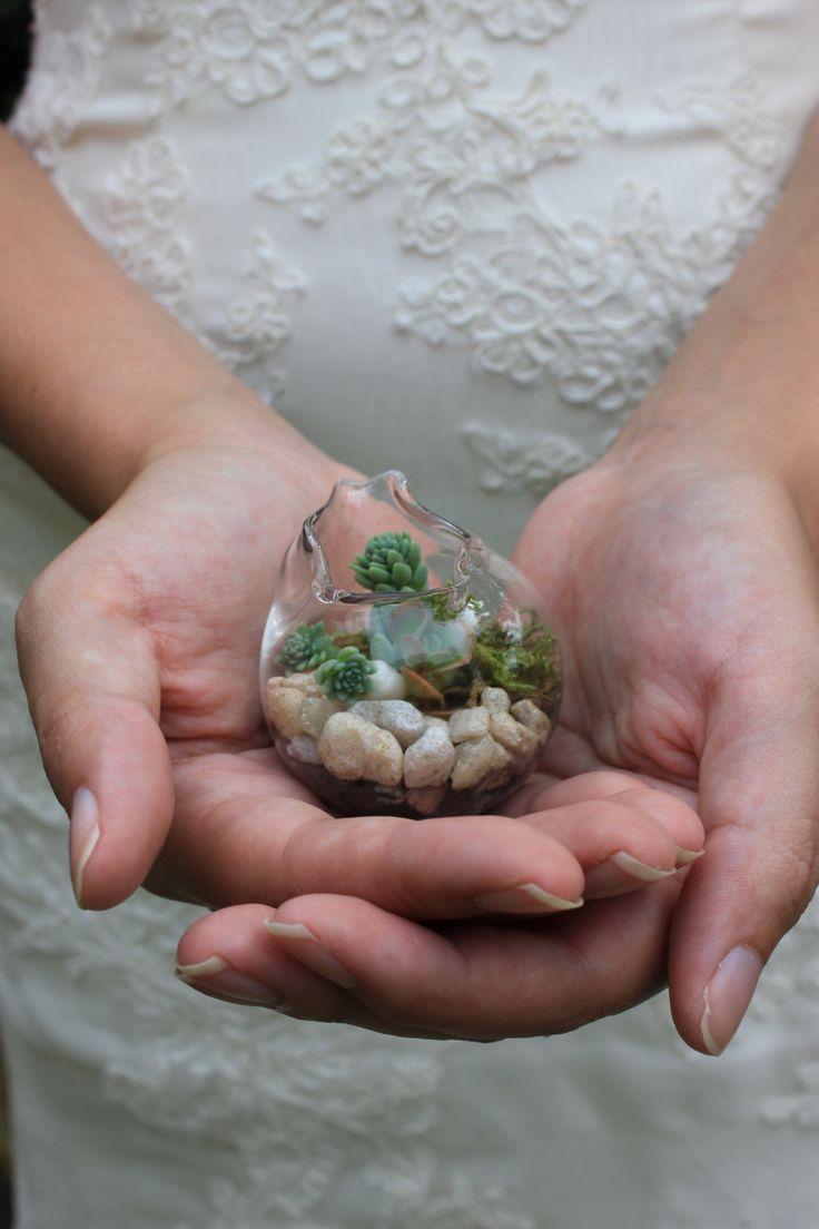 20 Miniature terrariums Blown Glass wedding favors Succulent.