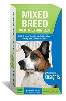 This is a great, inexpensive way to figure out your dog's breeds...so you know how to train!