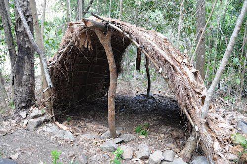 Indigenous shelter, Wujal Wujal  (Queensland, Australia)