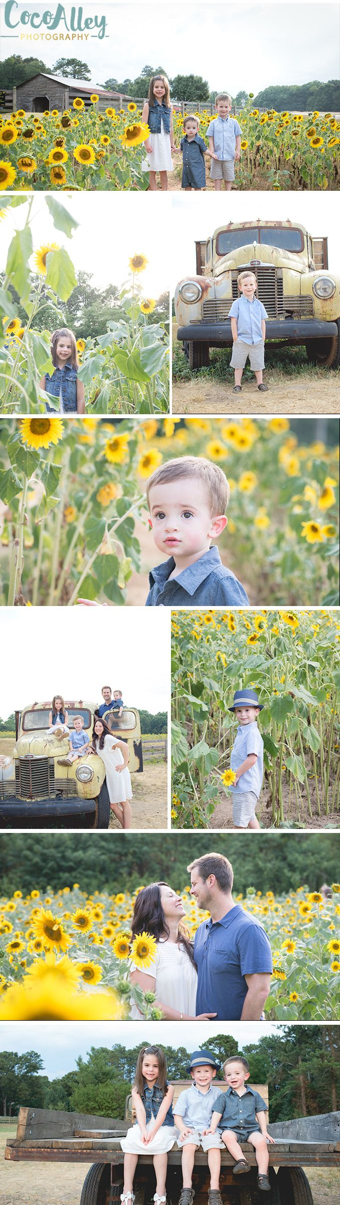 What a beautiful session in the sunflower fields! Sunflowers add a great pop of color to an outdoor photoshoot | sunflower family portraits | sunflower photo ideas |
