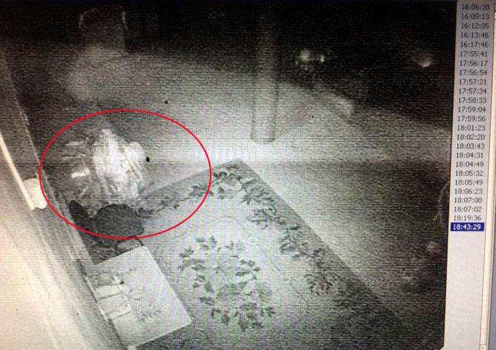 Fotos sugieren que un lama ha resucitado 89 años después de su muerte