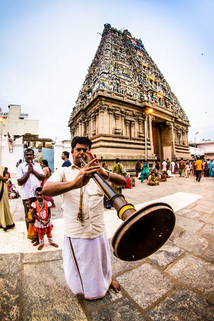 Un musicien jouant du Nadhaswaram, un instrument tamil au temple de Kapaleeswarar dans la ville de Chennai (anciennement appelée Madras), en Inde du Sud. http://atypika.ca/